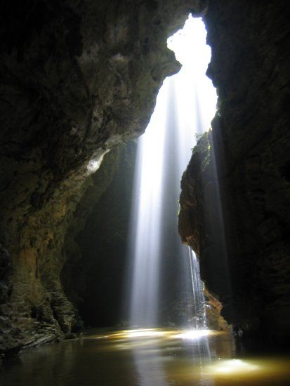 Waitomo Glowworm Caves, North Island ~ Holiday 4 U