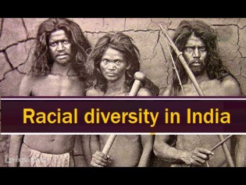 Racial groups in India || Indian History for Civil service exams || Raci...