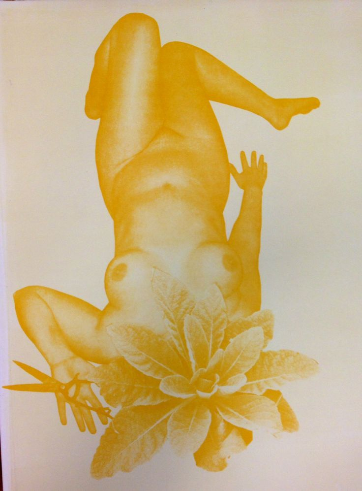 Weed as noxious growth, silkscreen and monoprint, 2014.