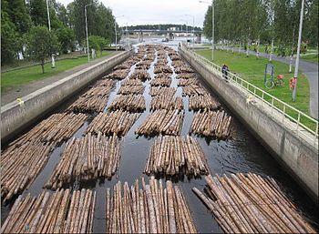Timber rafting in Joensuu