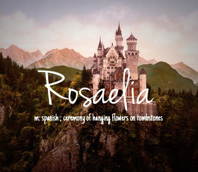 "Rosaelia - unique but beautiful baby girl name! I like to pronounce it ""Rose-AYE-lia"""