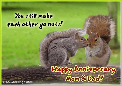 Happy Anniversary Mom And Dad Cards Cards Fun Occasion