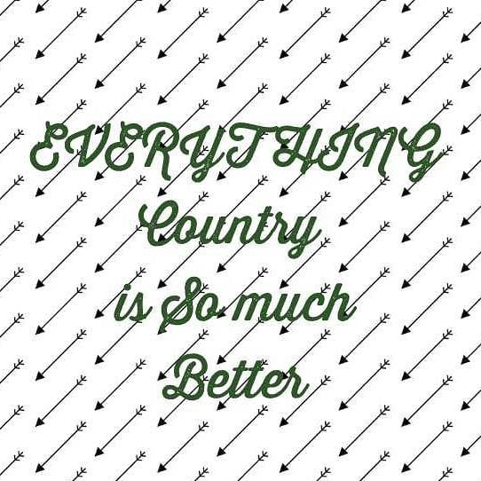 #everything #country #somuchbetter #better #best #countrymusic #music #countryattire #clothes #cowboy #cowgirl #cowboyboots #boots #stetson #fedora #horses #riding #attitude #redneckswitch #outdoors #adventures #fun #agriculture #nature #denim #countrygirl #countryboy #love #TumblingThoughts #TumblingThoughtsOriginalPiece