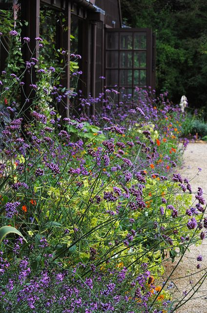 Beautiful perennial garden. Pinned to Garden Design by Darin Bradbury.