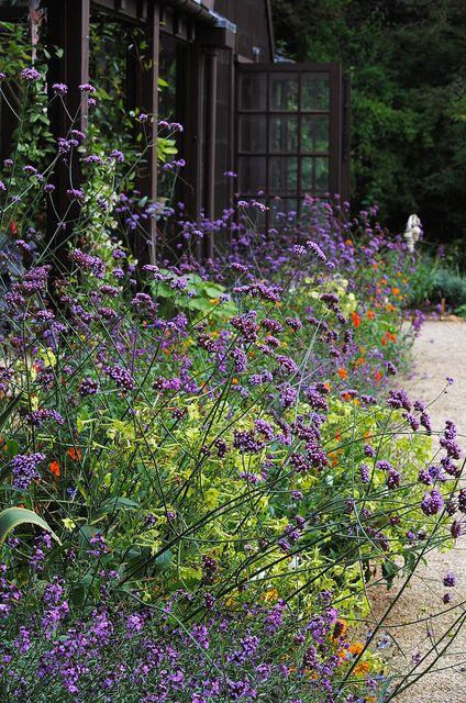 Beautiful perennial garden. Pinned to Garden Design by Darin Bradbury.