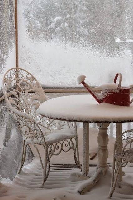 Winter Garden ❉ wunderschön