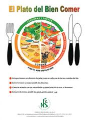 Guia practica para aprender a combinar los alimentos con el plato del bien comer