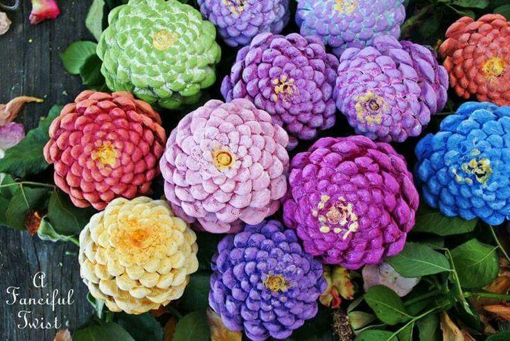 Pinecone bottoms painted to look like zinnias.  Pretty in an arrangement or as a Christmas ornament.