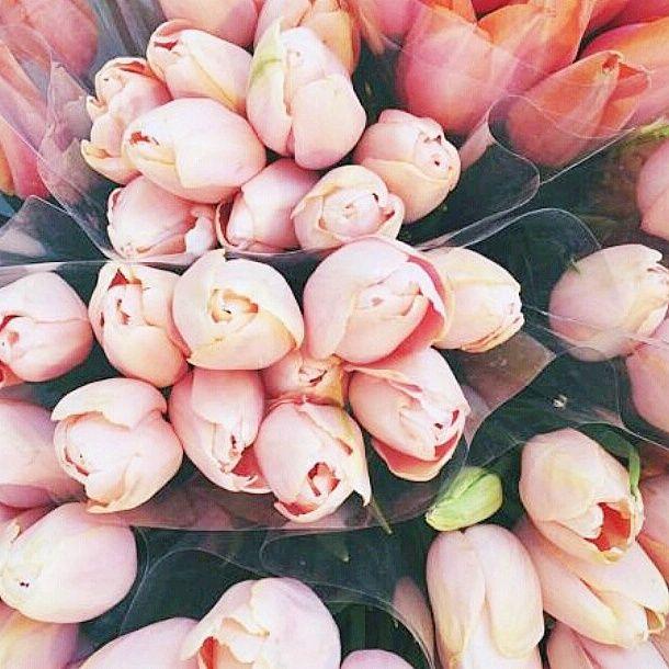 Beauty by MCM: SPRING FEELINGS