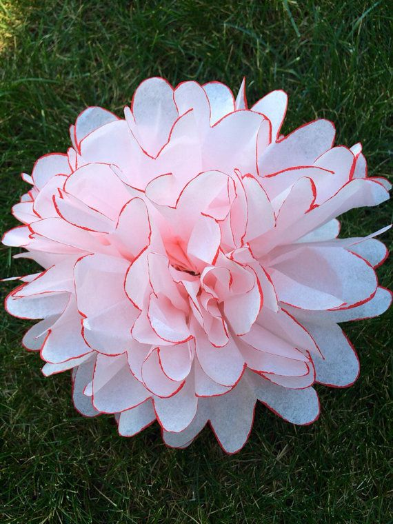 54 best pom poms canada images on pinterest etsy for Painted paper flowers