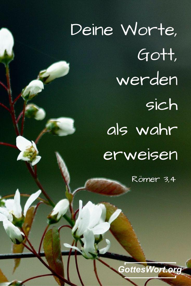 Deine Worte, Gott, werden sich als wahr erweisen, und du wirst siegen, wenn man dich verurteilen will. Roemer 3,4    Lese mehr: http://www.gottes-wort.com/erquicken-28.html