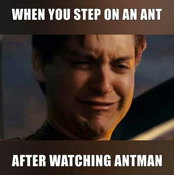 Antman funny meme