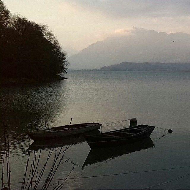 La calma, in primavera del lago di Santa Croce. (presso vittorio veneto)