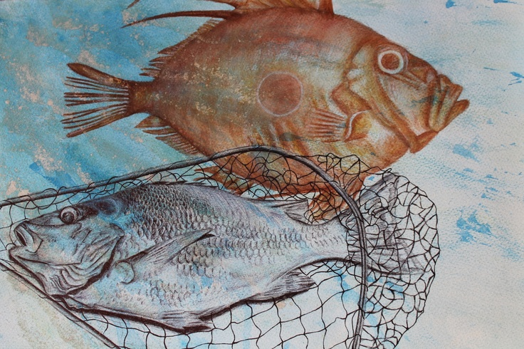 Logan Moffat, 15. New Zealand, the John Dory and the Schnapper.  Materials- water colour and black pen