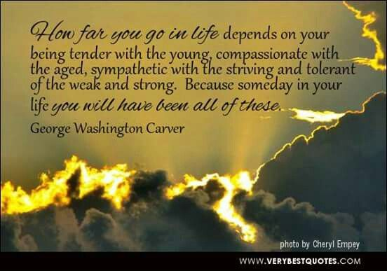 George washington carvers passion