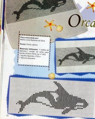 Ponto Oitinho: Orca