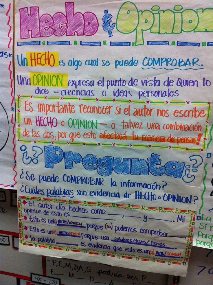 Fact & Opinion  translated - hecho y opinion