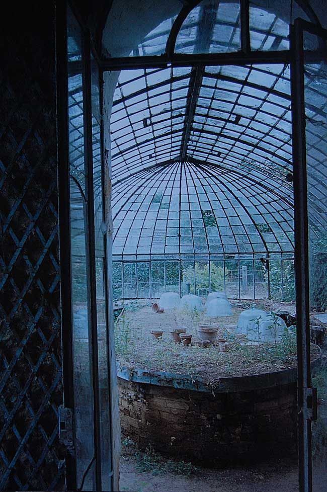 abandoned perfection -- I've had many dreams with a sunroom/ greenhouse like this, I love it!  I would still spend days, even in this state of disrepair.