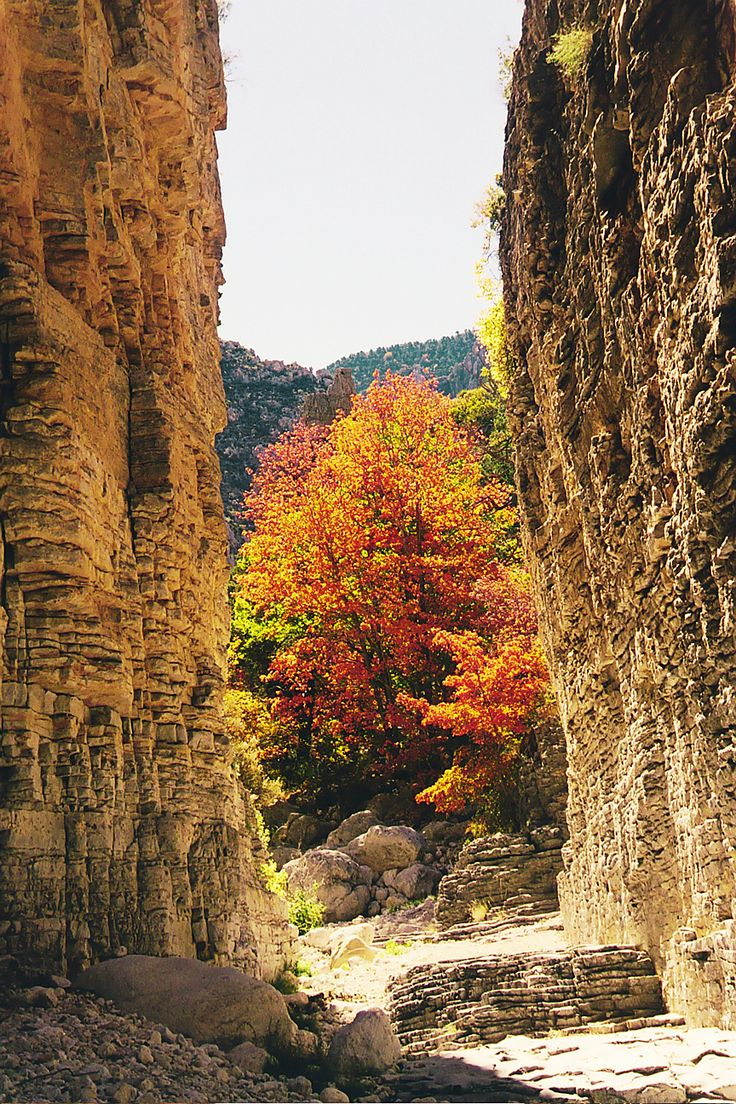 Devils Hall - Guadalupe Mountains National Park... hiked here and can't wait to go back! So beautiful and peaceful.