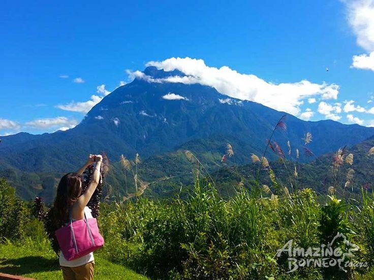 Kinabalu Park & Poring Hot Spring Tour- Amazing Borneo Tours - Amazing Borneo Tours