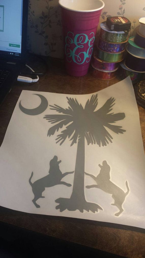 Coon hunting in the Palmetto State South by SouthrnXpressions