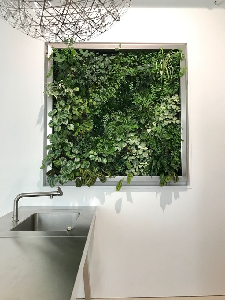 2 of 2 Twin Vertical Gardens in a West Side Studio, NYC. Architecture by Martin Hopp.