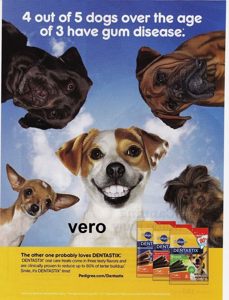 "2013 magazine ad PEDIGREE ""DENTASTIX"" dog teeth"