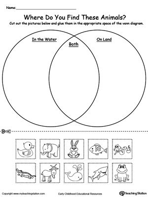 Practice sorting items into groups based on attributes by using this Venn Diagram printable worksheet and help your child strengthen their sorting and reasoning skills. Where do you find these animals, in water? on land? or both?