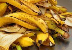 Bananenschalen als Dünger verwenden