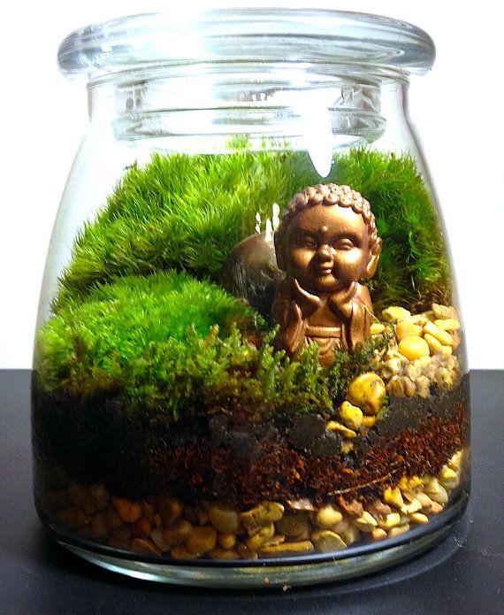 Moss Terrarium DIY Kit Or Assembled By HopHouseTerrariums On Etsy