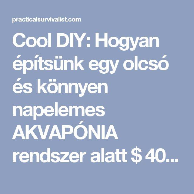 Cool DIY: Hogyan építsünk egy olcsó és könnyen napelemes AKVAPÓNIA rendszer alatt $ 400 - Oldal 2 of 2 - Gyakorlati Survivalist