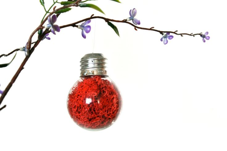 Mini Repurposed Light Bulb Ornament with Red Preserved Moss, Light Bulb Home Decoration, Red Light Bulb Christmas Ornament, Red Ornament by eGardenStudio on Etsy https://www.etsy.com/listing/169323685/mini-repurposed-light-bulb-ornament-with