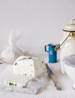 Legyél sajtmester: receptek házi sajthoz