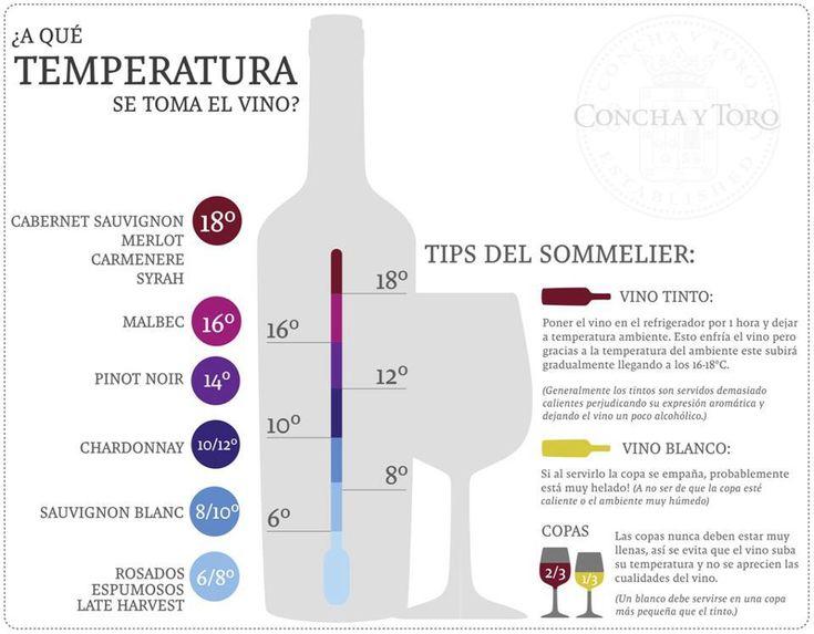 A qué temperatura se toma el vino #infografia #infographic