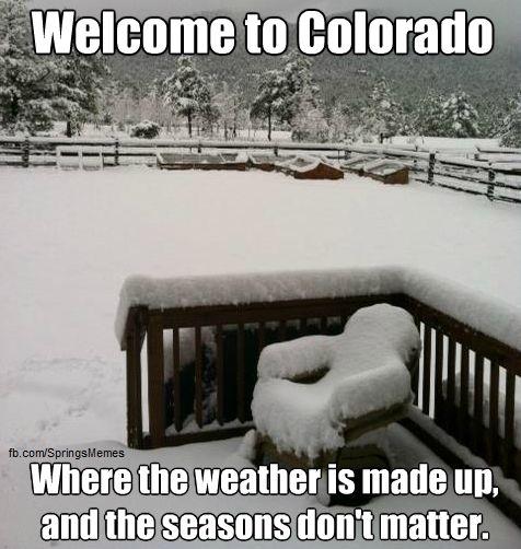 Haha oh, Colorado Springs memes!