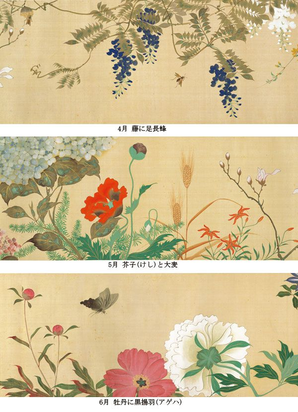 Birds and Flowers of the Four Seasons scroll. (detail). Sakai Hoitsu. 1818. Tokyo National Museum. 酒井抱一「四季花鳥図巻」 江戸時代後期酒井抱一「四季花鳥図巻」 江戸時代後期