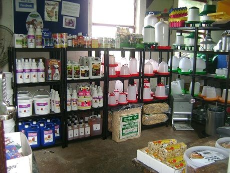 Poultry supplies available online at www.durhamhens.co.uk or from our premises at Tow Law.