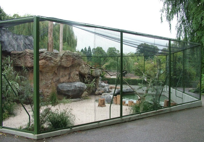 how awesome would this be for the cats to play outside?!?! but enclosed?!? so theyre safe?!?!?!?!?!??!