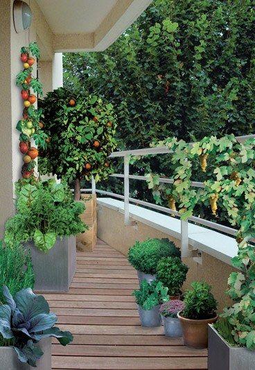 17 best ideas about narrow balcony on pinterest small terrace balcony ideas and small balcony - Outdoor amenager ...