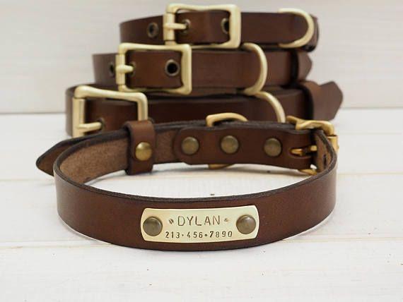 Chien collier collier de chien en cuir collier pour chien en