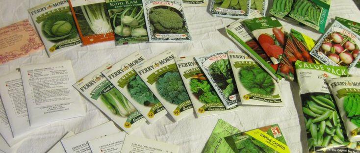 Tips On Growing Fall And Winter Vegetable Gardens – Indoor Outdoor Vegetable gardening
