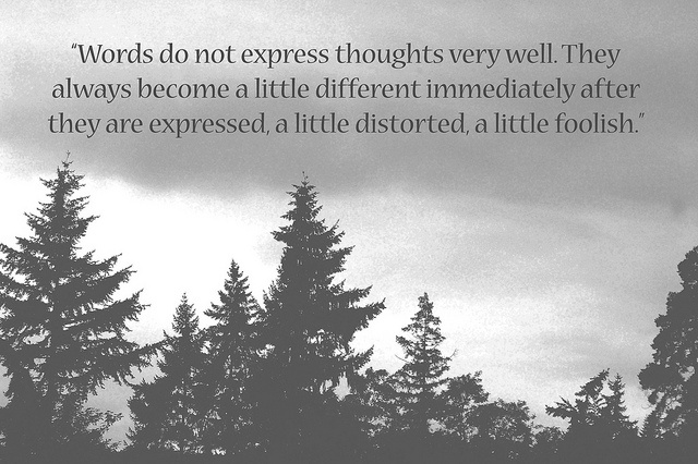 A quote from Herman Hesse  ...  perhaps that's why I always look to other's words...