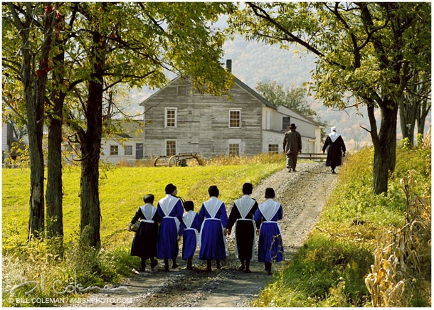 Image result for mennonites walking to church