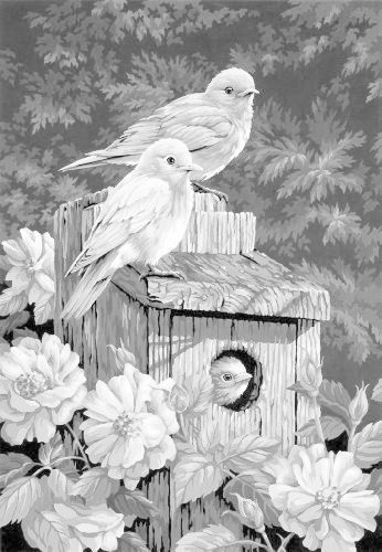 29 best Grayscale Coloring Pic images on Pinterest Coloring books - best of coloring pages adults birds