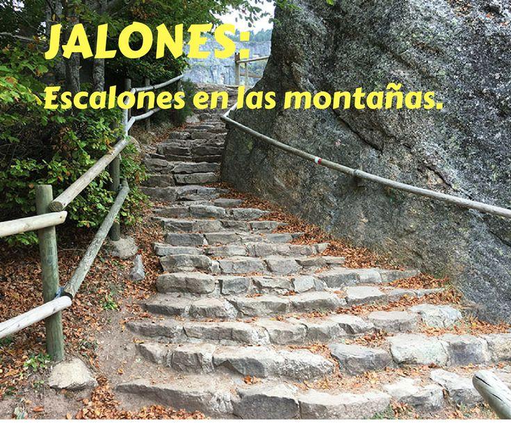 Jalones: palabra del diccionario soriano de nuestras redes sociales.