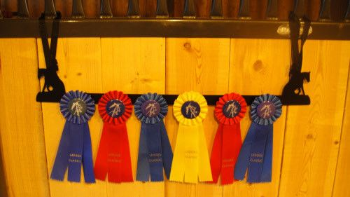 Showoff Ribbon Rack - Reining Horse