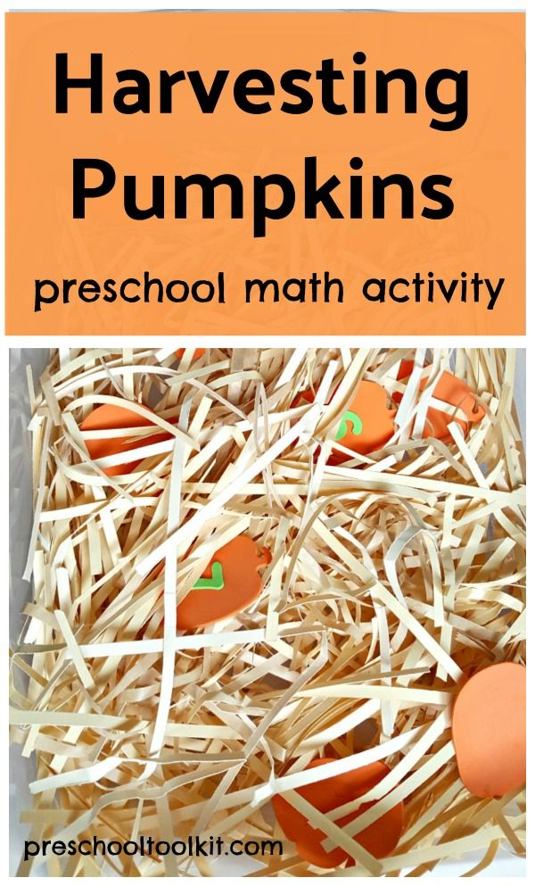 harvesting pumpkins preschool math activity