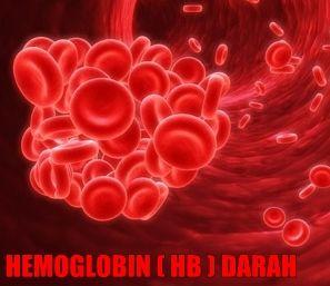 Cara Menurunkan HB - MENORMALKAN 3X LEBIH CEPAT, Hemoglobin menjadi normal, kembali ke keadaan semula sesuai dengan kebutuhan tubuh (tanpa penurunan drastis dan tidak melambung tinggi dikemudian hari). Juga efektif melancarkan sirkulasi darah, memenuhi nutrisi tubuh (mineral dan protein yang seimbang)