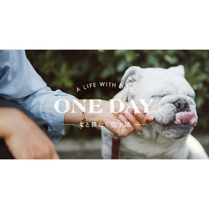 A LIFE WITH DOG / 犬と暮らすということ。 produced by Hideaki Hamada