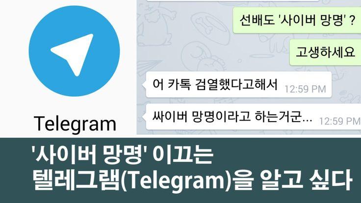 [NocutView] '사이버 망명' 이끄는 텔레그램(Telegram)을 알고 싶다  텔레그램이 깔끔하게 정리!